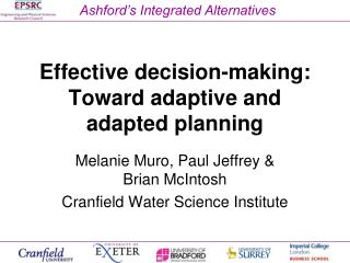 Effective decision-making: Toward adaptive and adapted planning