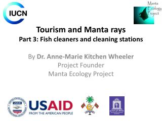 Tourism and Manta rays Part  3 : Fish cleaners and cleaning stations