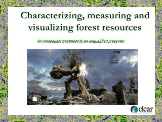 Characterizing, measuring and visualizing forest resources