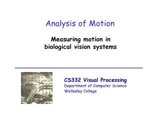 Analysis of Motion