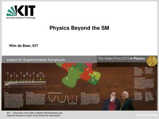 Physics Beyond the  SM