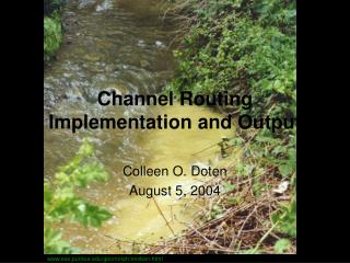 Channel Routing Implementation and Output