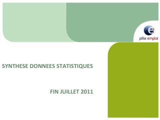 SYNTHESE DONNEES STATISTIQUES  			FIN JUILLET 2011