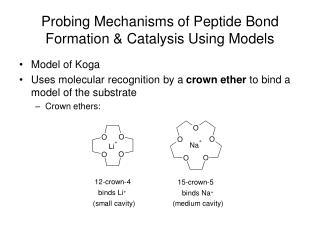 Probing Mechanisms of Peptide Bond Formation & Catalysis Using Models