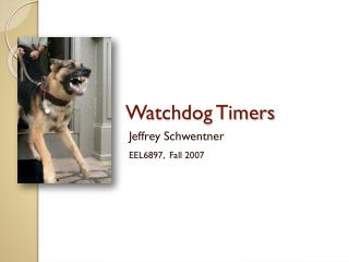 Watchdog Timers