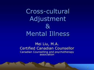 Cross-cultural Adjustment  & Mental Illness