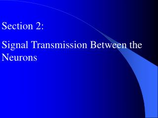Section 2: Signal Transmission Between the Neurons