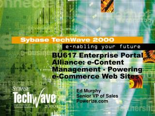 BU617 Enterprise Portal Alliance: e-Content Management - Powering e-Commerce Web Sites