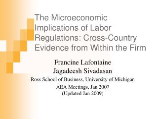 The Microeconomic Implications of Labor Regulations: Cross-Country Evidence from Within the Firm