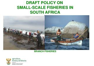 DRAFT POLICY ON  SMALL-SCALE FISHERIES IN  SOUTH AFRICA