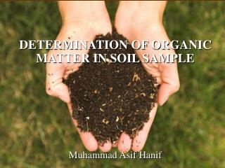 DETERMINATION OF ORGANIC MATTER IN SOIL SAMPLE Muhammad Asif Hanif
