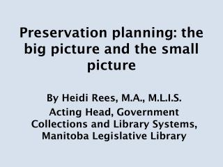 Preservation planning: the big picture and the small picture