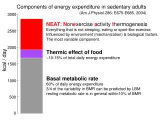 Components of energy expenditure in sedentary adults