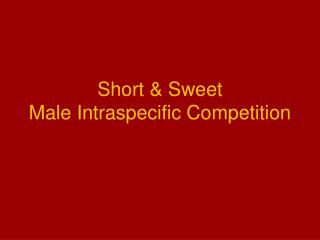 Short & Sweet Male Intraspecific Competition