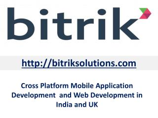 Professional Cross Platform Mobile Application Development