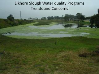 Elkhorn Slough Water quality Programs  Trends and Concerns