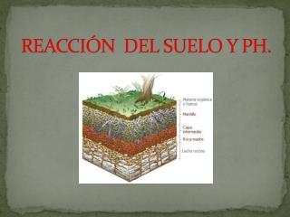 REACCIÓN  DEL SUELO Y PH.