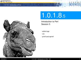 1.0.1.8 .5 Introduction to Perl Session 5