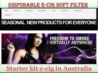 Disposable e-Cig soft filter