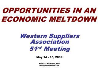 OPPORTUNITIES IN AN ECONOMIC MELTDOWN