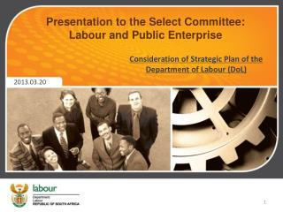 Presentation to the Select Committee: Labour and Public Enterprise