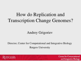 How do Replication and Transcription Change Genomes?