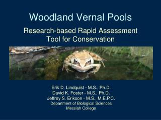 Woodland Vernal Pools