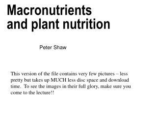 Macronutrients and plant nutrition