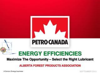 ENERGY EFFICIENCIES