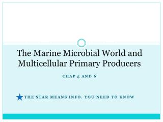 The Marine Microbial World and  Multicellular  Primary Producers