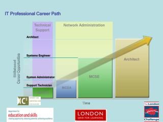 IT Professional Career Path