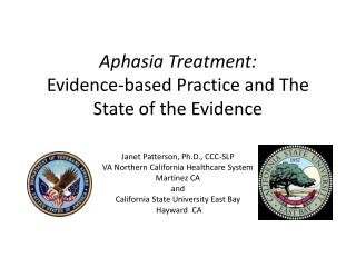 Aphasia Treatment: Evidence-based Practice and The State of the Evidence