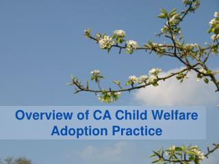 Overview of CA Child Welfare Adoption Practice