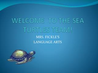 WELCOME  TO THE SEA TURTLES TEAM!