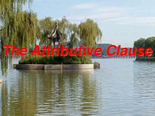 The Attributive Clause