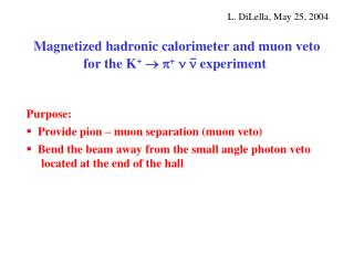 Magnetized hadronic calorimeter and muon veto