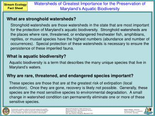 Stream Ecology Fact Sheet