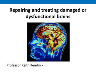 Repairing and treating damaged or dysfunctional brains