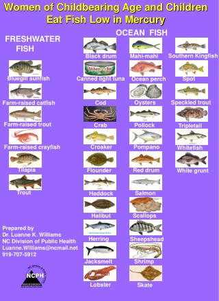 Griffin mayer 39 s presentations on slideserve for Fish low in mercury