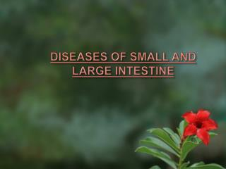 DISEASES OF SMALL AND  LARGE INTESTINE