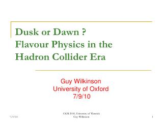 Dusk or Dawn ? Flavour Physics in the   Hadron Collider Era