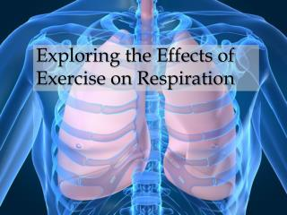 Exploring the Effects of Exercise on Respiration
