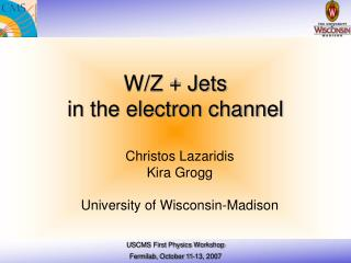 W/Z + Jets  in the electron channel