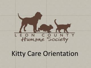 Kitty Care Orientation