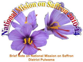 Brief  Note on National Mission on Saffron District Pulwama