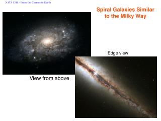 Spiral Galaxies Similar to the Milky Way