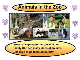 description zoo essay Descriptive piece - prison the shadows of the evil guard would seep the rusty bars of each cell in the zoo of an imaginative and highly descriptive essay.