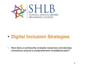 Digital Inclusion Strategies
