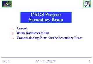 CNGS Project: Secondary Beam