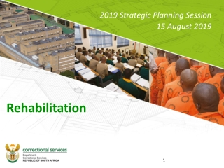 Mobilisation and Accessibility Planning for People with Disabilities